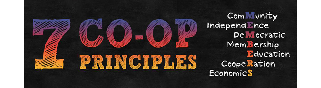 7 co-op principles